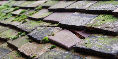 Stone roof repair costs